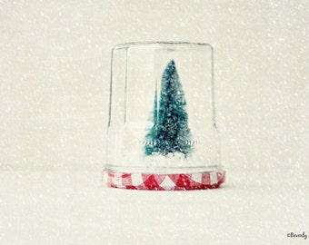 Christmas, Tree, jar, fine art photography