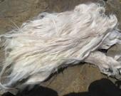 """White/Beige Suri Alpaca Locks """"Debutante"""""""