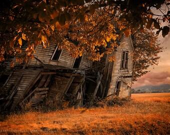 Nature Photograph Abandoned Farmhouse Fall Autumn Colors 8x12