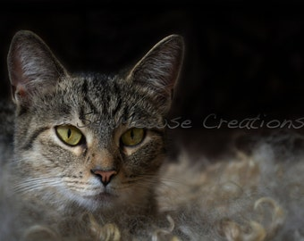 Instant Download!  Stylized picture of a small tabby cat, swimming in a sea of wool.