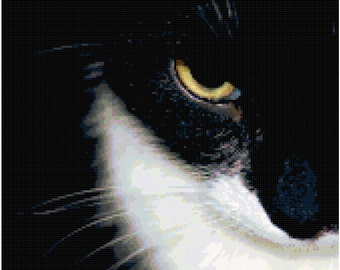 Black and White Cat Eye Counted Cross Stitch Pattern Chart PDF Download by Stitching Addiction