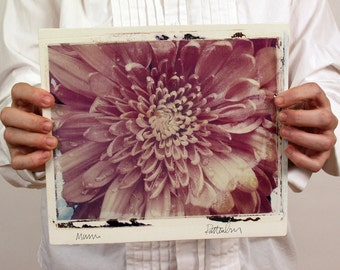 Mum.   Large Format Polaroid Emulsion Transfer Printed On Hand-Built Fired Ceramic Slab.  Chrysanthemum.