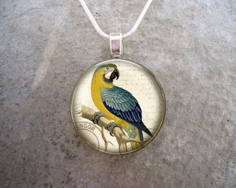 Parrot Jewelry - Glass Pendant Necklace - Victorian Bird 7