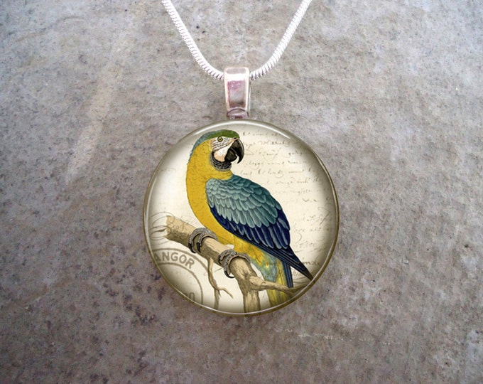 Parrot Jewelry - Glass Pendant Necklace - Victorian Bird 7
