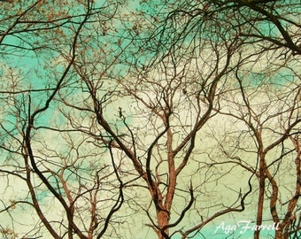 Turquoise and Yellow Art, Tree Photography, Tree Branch Art, Nature Photography, Surreal Tree Wall Art, Nature Print - In Branches