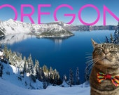 Oregon Crater Lake Postcard with Cat Wearing a Bow TIe
