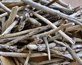 Natural driftwood 50 stick shaped pieces from California beaches, craft supply small pieces