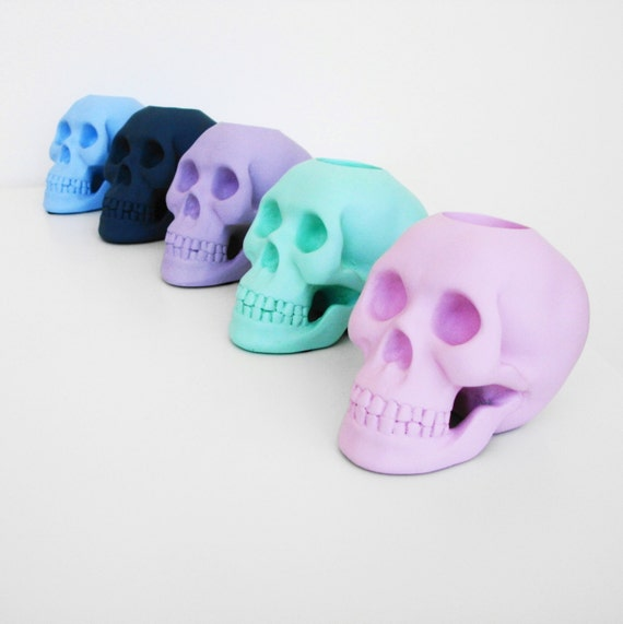 Skull Human Skull Skulls Taxidermy Candle Holder Skull Candle Human