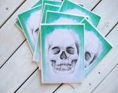 1 BLANK Skull Card Greeting - 5 x 7