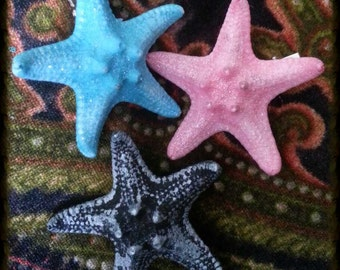 Resin cast starfish hair clip