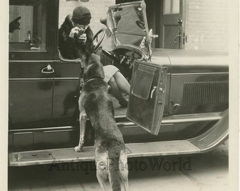 Woman in automobile w camera dog antique movie photo