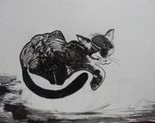 Cat Pencil Ink Drawing Fairy Wall Art Contemporary Drawing Pencil Ink on Paper Animal Drawing Art