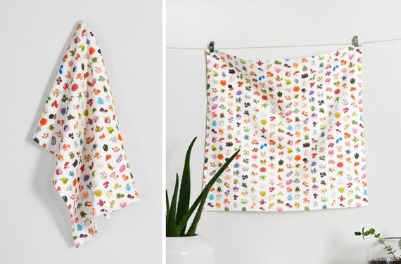 Nature's Collection - Illustrated Printed Fabric Home Decor - Fruit - Gems - Plants - Coral