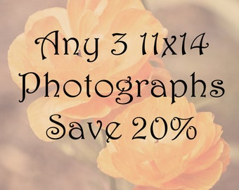 20% off any 3 11x14  fine art photographs home decor wall art nature travel unique gift ideas sale photography sets decorating ideas