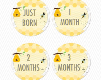 "Honey Bee 4"" Milestone Stickers/ Iron Ons"