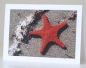 Starfish Photo Greeting Card, Australian Beach, Nature Photography