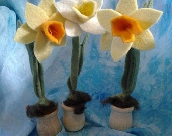 Daffodil Root Child - Waldorf Gnome - Daffodil Gnome in a Pot