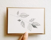 Hand Drawn Botanical Card with Ink Drawing, black and white Nature Original Art