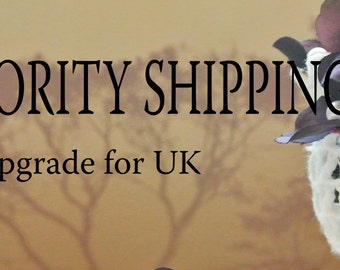 Priority Shipping Upgrade for UK