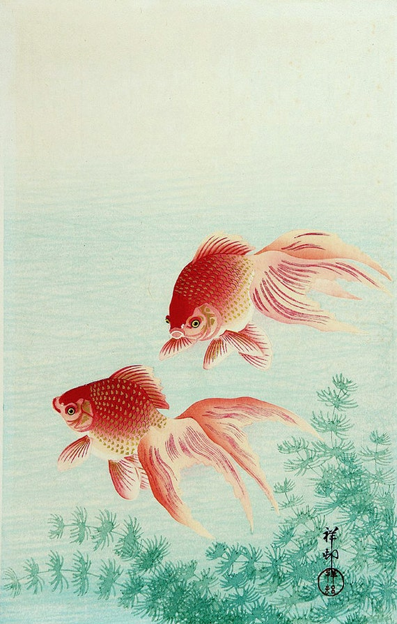 Japanese art fish paintings goldfish ohara koson fine art for Japanese fish painting