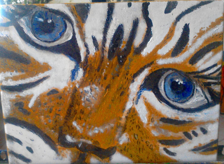 willdifeartdvds  Wildlife Art Videos