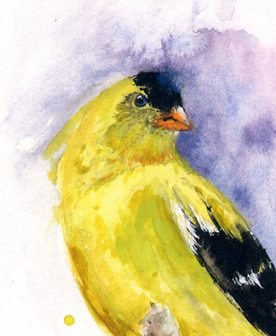 American Goldfinch Painting American Goldfinch Painting