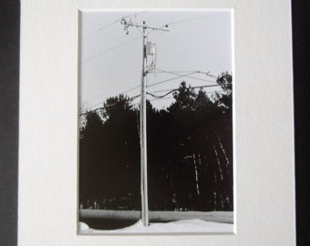 Black and White Photography - 8x10 - Black and White - Telephone Pole