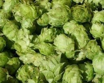 Fresh SIMCOE Leaf Hops For Making Home Brewed Craft Beer 1 oz Package