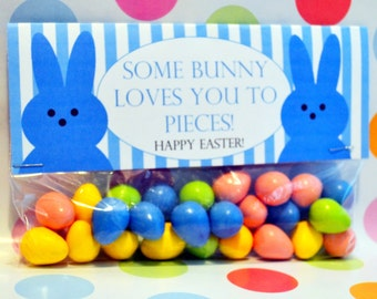 Easter Favor; Easter Topper; Some Bunny Loves You to Pieces; Easter Favor