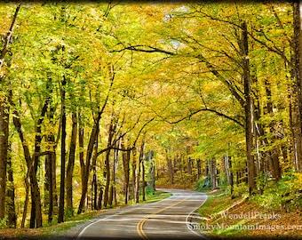 Smoky Mountain Road in Autumn E41