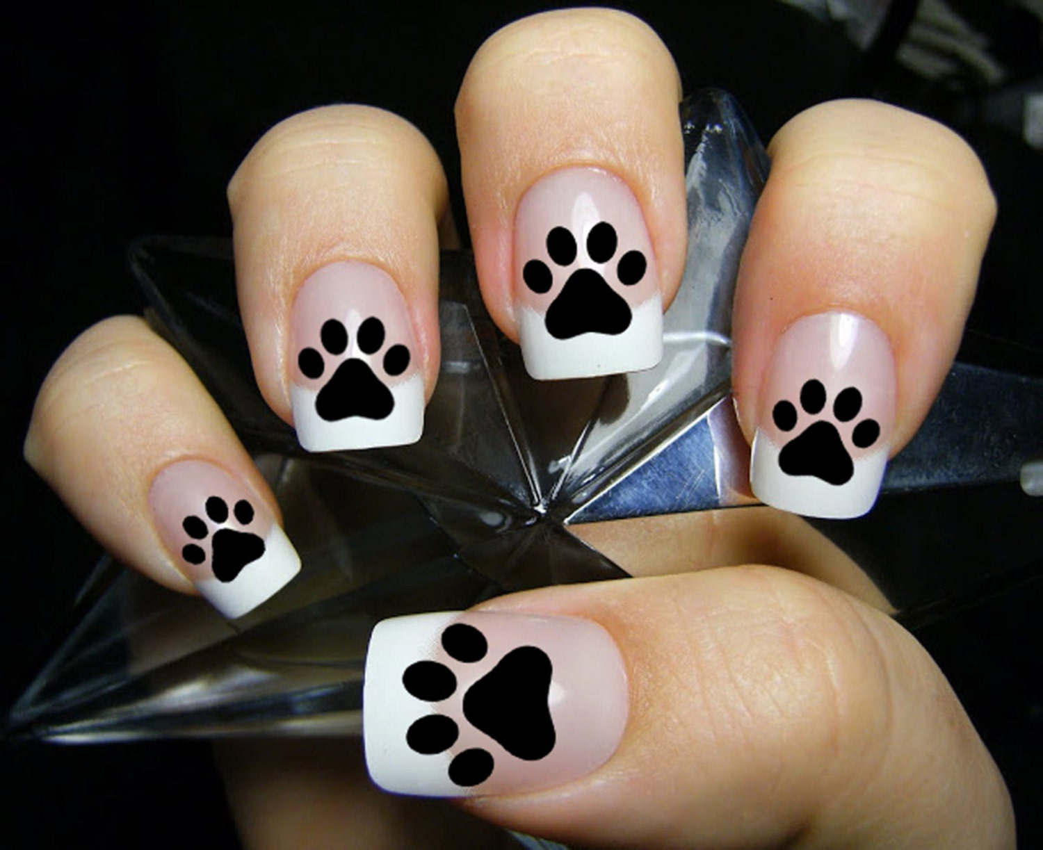 Details. 48 PAWS PRINTS Nail Art ... - 48 PAW PRINTS Nail Decals PAW Kitten Puppy Dog Paws Black