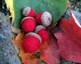 Red Needle Felted Acorns, Set of 5