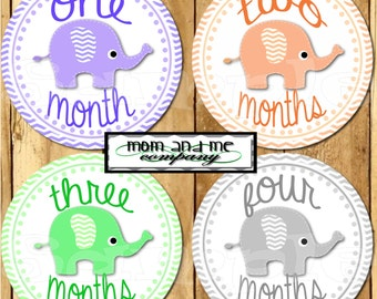 Elephant Baby Girl Monthly Stickers Baby Stickers Baby Shower gift 1- 12 Months bodysuit stickers infant month stickers Milestone stickers