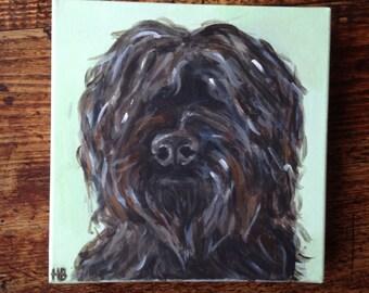 Commission your own custom pop art pet portrait, pet portrait, canvas pet portrait - 20 x 20cm, dog painting, dog art