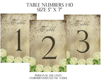Digital download printable wedding party table numbers 1-10 shabby hydrangea vintage you print