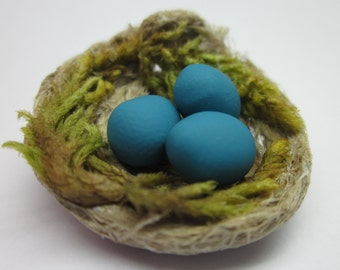 Miniature bird nest with eggs