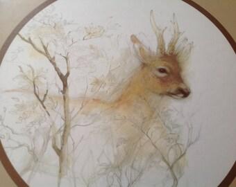 vintage 70's watercolor print of deer stag reindeer framed with round mat