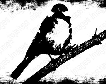 Handmade Item bird  Black and White Digital Images for Instant Download   Add to T Shirts Jackets Posters Coffee Mugs for Holiday gifts