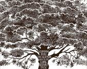 Dave Matthews Band - Dreaming Tree Lyrics Print