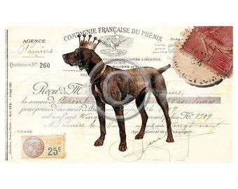 French Digital Download Gordon Setter, Dog Digital, ACEO, Digital Collage, Digital French Gift Tags,Transfer Images,Vintage Digital
