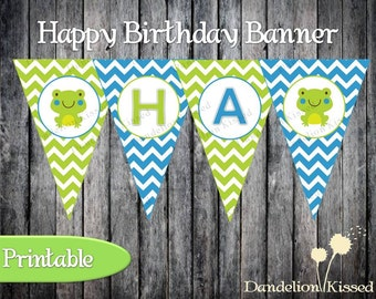 Blue Green Frog Happy Birthday Digital Printable Banner