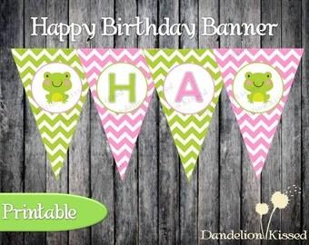 Pink Green Frog Happy Birthday Digital Printable Banner
