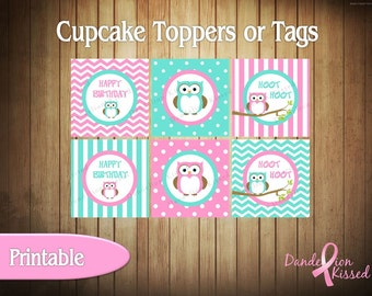 Pink Teal Owl Birthday Digital Cupcake Toppers Favor Tags Printable DIY