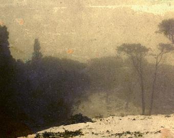 Snowfall, photography, fine art print