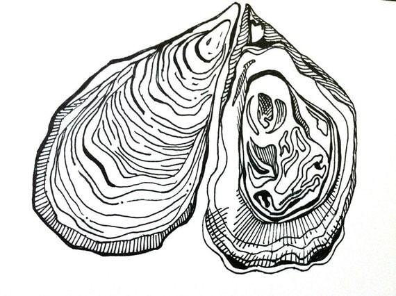 Ocean Shells Drawing Costal Ocean Ink Drawing