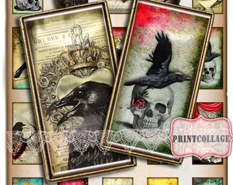 Raven Bird Animal images Digital collage sheet 1x2 inch domino pendants printable images jewelry backgrounds d45