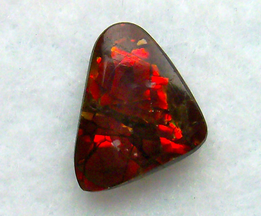canadian ammolite fossil gem untreated solid brilliant