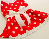 Red and White Polka Dot Party Pet Dress