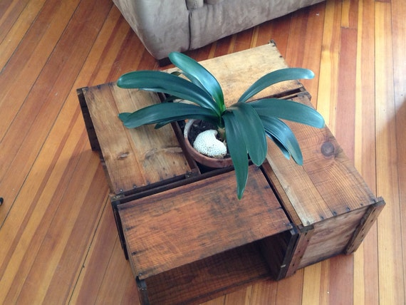 Apple Crate Coffee Table Etsy Shop Old and Built To Last