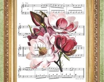 Kitchen Art Print Magnolia Art Print Botanical Print Sheet Music Print or Dictionary Art Print Wall Decor